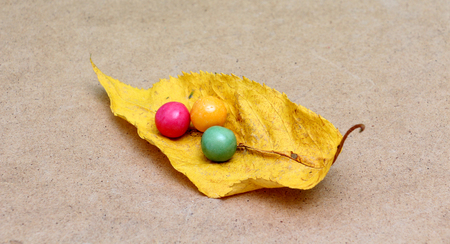 gumballs: picture of a colorful assortment of shiny round gumballs on an autumn leaf Stock Photo