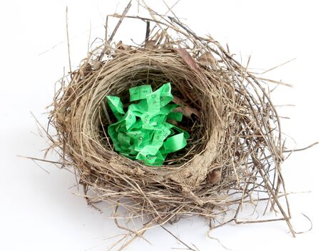 picture of a tape peasure in a bird nest on white background