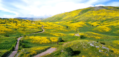 National Park Galicica in Macedonia,image of a