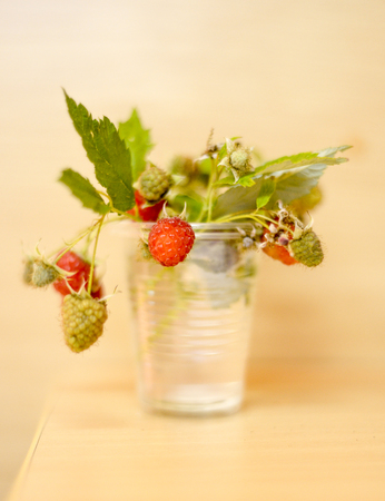 luscious: just harvested fresh organic raspberries in a disposable cup with water,image of a
