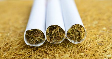 three cigarettes on a dry dobacco bakcground,image