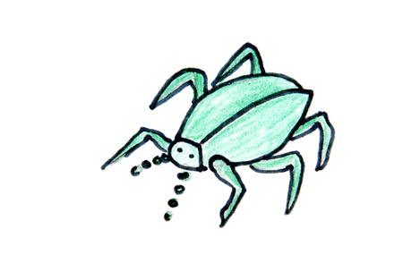 drawing on a green spider on a white