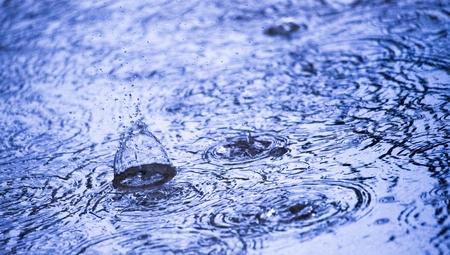 summer raindrops and ripple