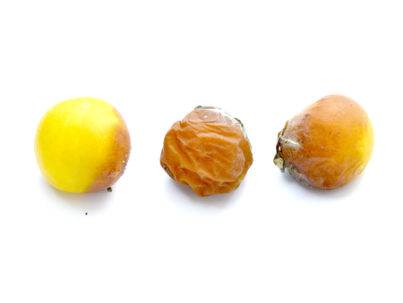rotten plum fruit on white background,image of a