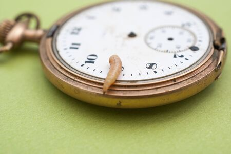 worm larvae on a vintage pocket clock image