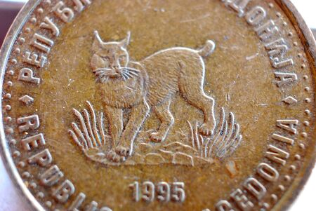 macedonian coin , denar close up image