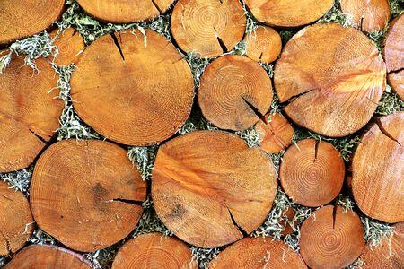 fire wood log, winter season theme image, Stock Photo