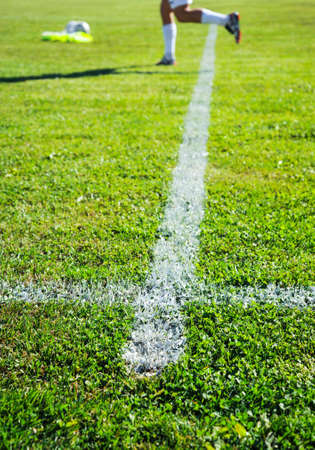 Soccer Field with green grass, sport theme image