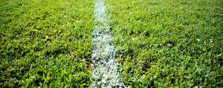 Soccer Field with green grass, sport theme image Фото со стока