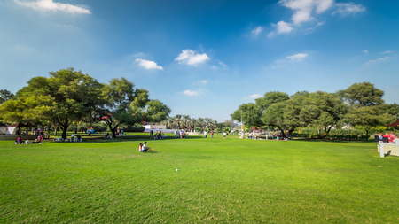 Alley with green lawn and trees at Dubai Creek park timelapse. Dubai, United Arab Emirates. Blue cloudy sky