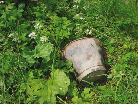 Discarded rusty bucket in weeds of allotment, England;