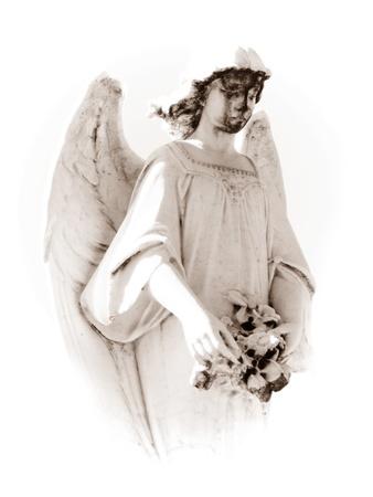 Sad angel photo