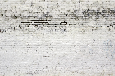 brickwall: White wall