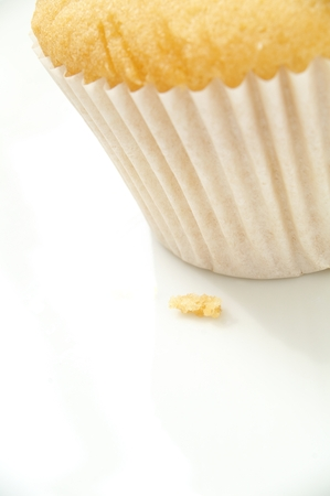 undecorated: plain cup cakes undecorated