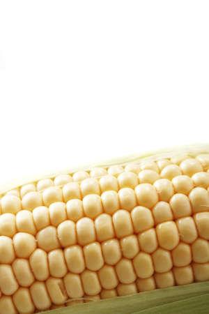sweetcorn: fresh sweetcorn cob