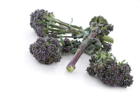 ingrediant: purple sprouting broccoli