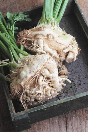 celeriac: celeria and celery