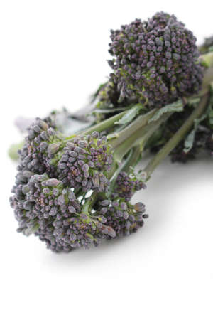 sprouting: purple sprouting broccoli