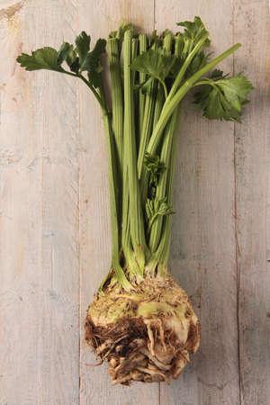 celeriac: celleria and cellery