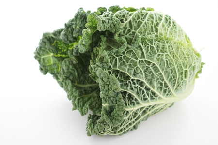 savoy cabbage: fresh whole savoy cabbage Stock Photo