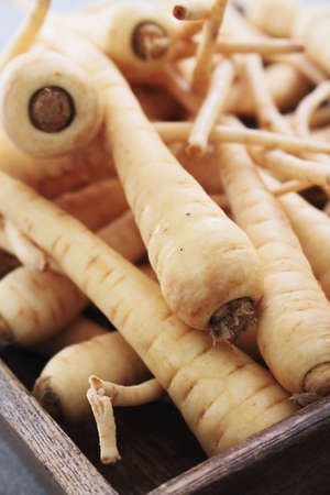 parsnips: young parsnips