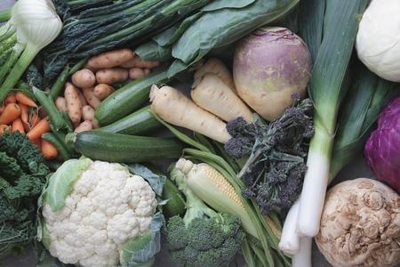 ingrediant: vegetable selection background