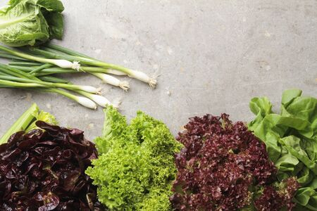 lettuces: fresh picked whole lettuce varietys