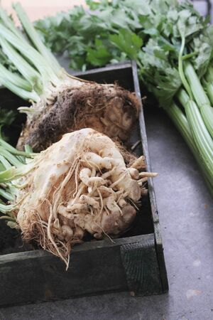 celeriac: celeriac and celery Stock Photo