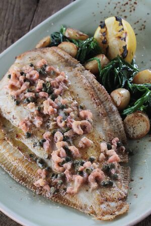 sole: plated sole flat fish meal