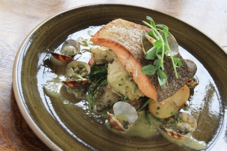plated: salmon fillet plated meal