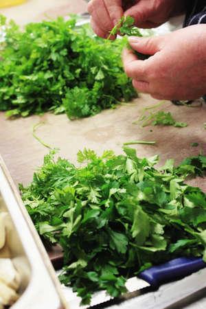 ingrediant: chef chopping parsley Stock Photo