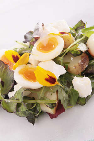 quail egg: potato salad with quail egg Stock Photo