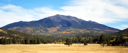 mount humphreys: An autumn view of the northwest slope of the San Francisco Peaks, Arizona