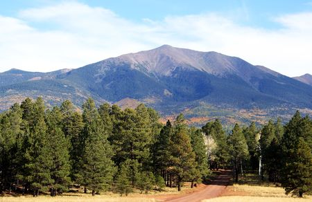 mount humphreys: A forest road through the ponderosa pines beckons travelers up toward the aspen covered slopes of the San Francisco Peaks in Arizona. Stock Photo