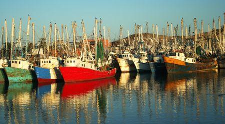 docked: Un colorido de la flota de Barcos Camaroneros Acoplado Reparto Reflexiones en las tranquilas aguas de la Marina, Rocky Point, Mexico Foto de archivo