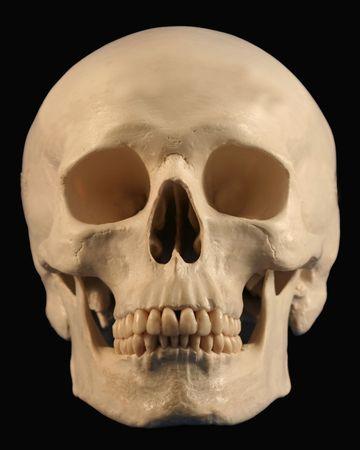 A Forward Looking Human Skull On Black