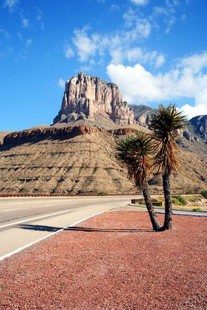 guardrails: A Yucca on the Highway to Guadalupe Mountains National Park, Texas, with El Capitan Looming Ahead Stock Photo
