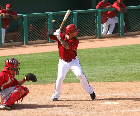 Ryan Roberts bats in an Arizona Diamondbacks game against the Cincinnati Reds on March 11, 2010, at Tucson Electric Park in Tucson, Arizona, during spring training.