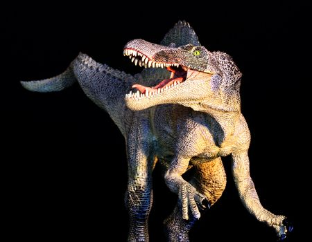 A Huge Spinosaurus Dinosaur Stands Against a Black Background