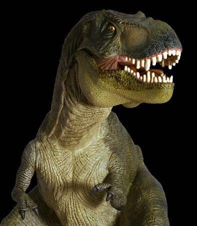 tiran: Een Tyrannosaurus Rex jacht tegen een zwarte achtergrond
