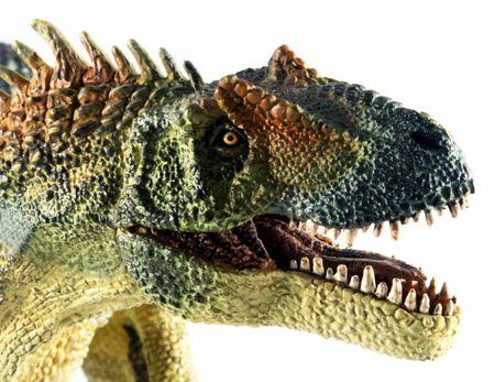 A Huge Allosaurus Dinosaur Against a White Background
