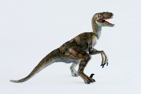 A Velociraptor Dinosaur Stands Against a White Background photo