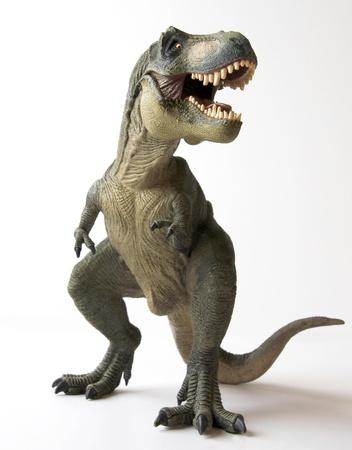 dinosauro: Un Tyrannosaurus Rex dinosauro con meravigliata mascelle piena di denti aguzzi