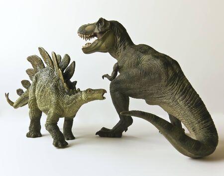 t rex: Een Stegosaurus en Tyrannosaurus Rex Battle tegen een witte achtergrond Stockfoto