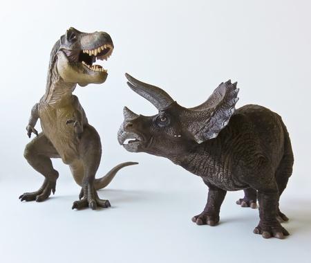 Een Triceratops en de Tyrannosaurus Rex Battle tegen een witte achtergrond