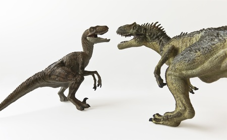 A Velociraptor and Allosaurus Battle Against a White Background Banque d'images