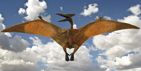 A Pteranodon Pterosaur Glides in a Blue Sky with Clouds