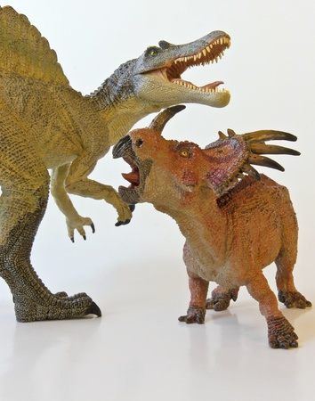 A Spinosaurus and Styracosaurus battle it out against a white background Stock Photo - 12268879