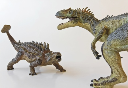 Ankylosaurus and Allosaurus battle it out against a white background Stock Photo