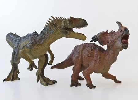 a frill: Allosaurus and Styracosaurus battle it out against a white background Stock Photo